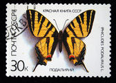 USSR - CIRCA 1987: A post stamp printed in USSR shows butterfly from The Red Book, series, circa 1987. — Stock Photo