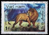 VIETNAM - CIRCA 1982: A stamp printed in Vietnam shows lion, series, circa 1982 — Stock Photo