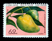 VIETNAM - CIRCA 1970s: A stamp printed by Vietnam shows Mango - Mangifera indica, stamp is from the series, circa 1970s — Stock Photo