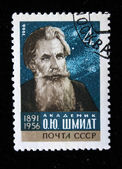 USRR - CIRCA 1966: A stamp printed in the USSR shows Otto Schmidt, circa 1966 — Stock Photo