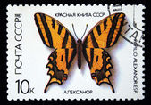 USSR - CIRCA 1987: The postal stamp printed in USSR shows butterfly, series, circa 1987 — Stock Photo