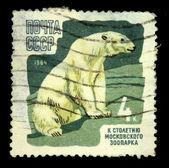 ссср - около 1964: показывает марку, напечатанную в ссср, около 1964 — Стоковое фото