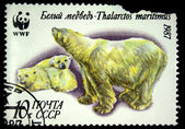 USSR - CIRCA 1987: A stamp printed in the USSR shows Polar bears - Thalarctos meritimus, circa 1987 — Stock Photo