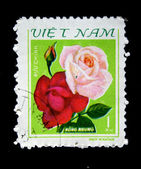 VIETNAM - CIRCA 1970s: A stamp printed in Vietnam shows flower Red and pink roses, circa 1970s — Stock Photo