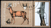 BULGARIA - CIRCA 1981: A stamp printed in Bulgaria shows Roe Deer - Capreolus capreolus, circa 1981 — Stok fotoğraf