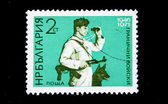 BULGARIA - CIRCA 1971: A stamp printed in Bulgaria shows frontier guard with a dog, circa 1971 — 图库照片