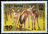 VIETNAM - CIRCA 1980s: A stamp printed by Vietnam shows , stamp is from the series, circa 1980s — Fotografia Stock