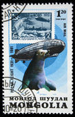 MONGOLIA - CIRCA 1981: A stamp printed in the Mongolia shows an old stamp, zeppelin and Seal, is devoted Polar flight of 1931 year, series, circa 1981 — Stock Photo