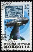 Монголия - около 1981: марку, напечатанную в Монголии показывает старый штамп, zeppelin и печати, посвященных Полярный рейс 1931 года, серии, около 1981 — Стоковое фото