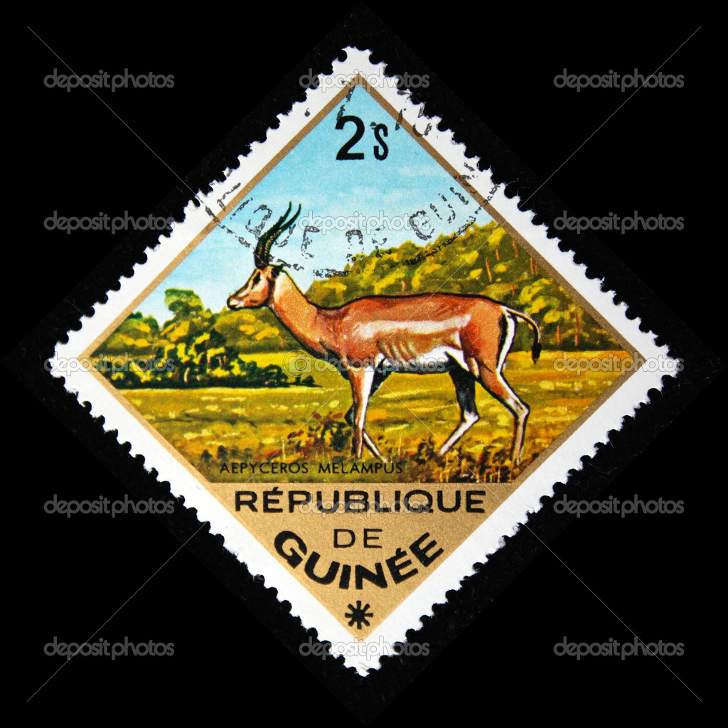 GUINEA - CIRCA 1975: A stamp printed in Guinea shows Black-faced Impala - Aepyceros melampus, circa 1975 — Stock Photo #12161164
