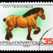 BULGARIA - CIRCA 1980: A stamp printed in Bulgaria shows Shire horse, circa 1980 - Stock Photo