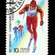 USSR - CIRCA 1988: A stamp printed in the USSR shows a cross country skier, series devoted Olympic games in Calgary, circa 1988 — Stock Photo