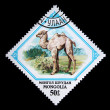 MONGOLIA - CIRCA 1982: A stamp printed in Mongolia shows small camel, one stamp from series, circa 1982 — Stock Photo