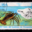 CUBA - CIRCA 1990: A stamp printed in Cuba shows Spiny lobster - Panulirus argus, circa 1990 — Stock Photo