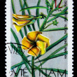 "A stamp printed in North Vietnam from the ""Flowers"" issue showing a yellow rose, circa 1968. — Stock Photo"