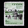 CEYLON - CIRCA 1950 — Stock Photo