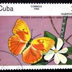 Постер, плакат: CUBA CIRCA 1984