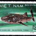 VIETNAM - CIRCA 1980s — Stock Photo