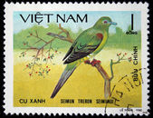 VIETNAM - CIRCA 1980: A stamp printed in Vietnam shows Yellow-vented green pigeon or Seimun treron seimundi — 图库照片