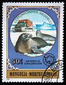 MONGOLIA- CIRCA 1980 — Stock Photo