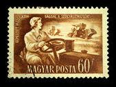 Ungern - ca 1950 — Stockfoto