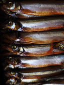 Smoked capelin — Stockfoto