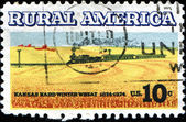Kansas hard winter wheat, Rural America — Stock Photo