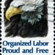 Stock Photo: Organized Labor, Proud and Free