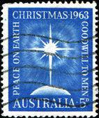 Star of Bethlehem — Stock Photo