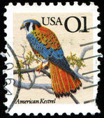 A stamp printed in United States of America — Stock Photo