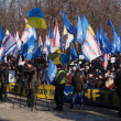 Pro-Yanukovych rally in eastern Ukraine — Stock Photo #39512119