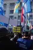 Pro-Yanukovych rally in eastern Ukraine — Stock Photo