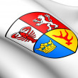 Spree-Neisse Coat of Arms, Germany. — Stock Photo