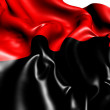 Anarchist Flag — Stock Photo