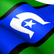 Torres Strait Islanders Flag — Stock Photo #13845059