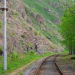 Railroad track — Stock Photo #1717400