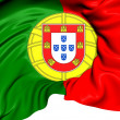 Flag of Portugal — Stock Photo #28522391