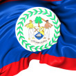 Flag of Belize — Stock Photo #28740029
