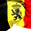 Government Ensign of Belgium — Photo