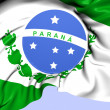 Flag of Parana, Brazil.  — Stock Photo