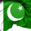 Flag of Pakistan — Stock Photo #29580331