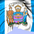 Flag of Edmonton, Canada. — Stock Photo #29746393