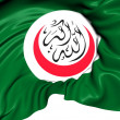 Foto de Stock  : Organisation of Islamic Cooperation Flag