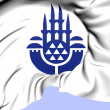 Istanbul Coat of Arms — Stock Photo #30202137