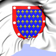 Counts and Dukes of Alencon Coat of Arms — Stock Photo #30404325