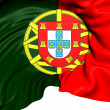 Flag of Portugal — Stock Photo #30404441
