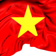 Flag of Vietnam — Stock Photo #30404491