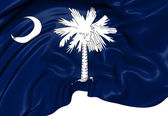 Flag of South Carolina, USA. — Foto Stock
