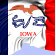 Flag of Iowa, USA. — Stockfoto