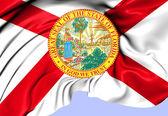 Flag of Florida, USA. — Stock Photo